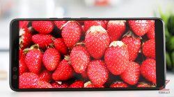 HTC U12+ display