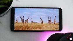 Asus Zenfone Max Pro M1 display