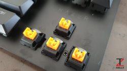 Orange Switch